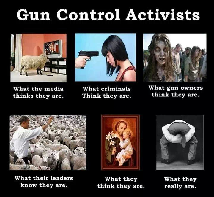gun control supporters perfectly illustrated picture